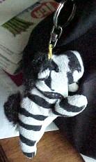zebra.jpg (13213 bytes)
