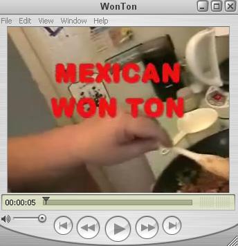 Mexican Won Ton