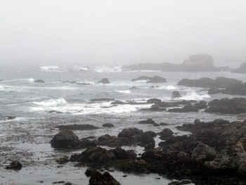 ocean.jpg (37649 bytes)