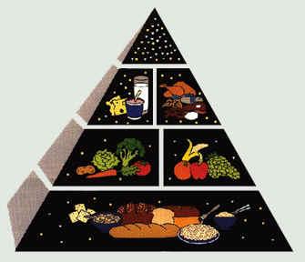 FoodPyramid.jpg (87300 bytes)
