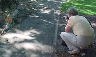 squirrelpkc.jpg (30124 bytes)