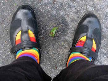 rainbowsox.jpg (60264 bytes)