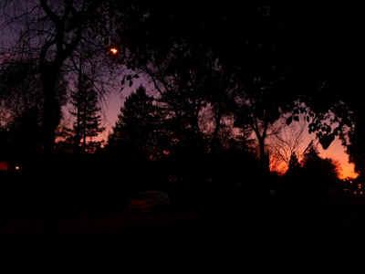 sunset1209.jpg (37014 bytes)