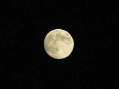 moon.jpg (21244 bytes)